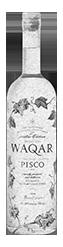 Pisco-Waqar